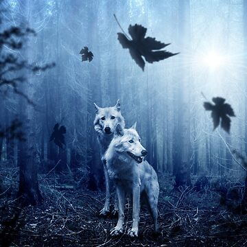Wolf by Monkeydario