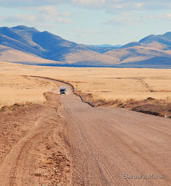 On the Road Again by Barbara Manis