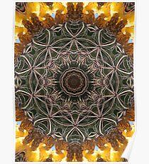 Kactus Kaliedascope Poster