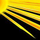 Sunflower Rays by pinak