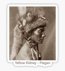 Yellow Kidney - Piegan - Vintage Photographic Portrait Sticker
