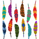Colorful Feathers by lotuscrusade