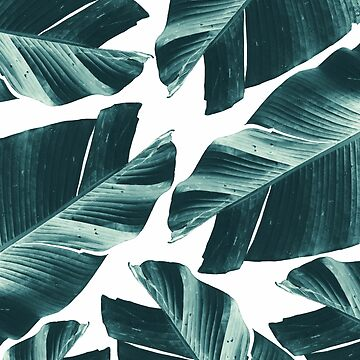 Tropical Banana Leaves Vibes #2 #foliage #decor #art by anitabellajantz
