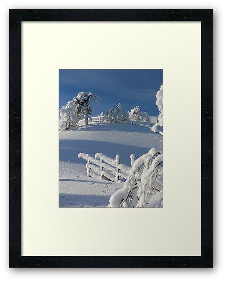 Winter by ilpo laurila