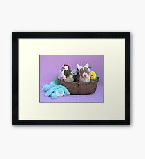 Easter Puppies Framed Print