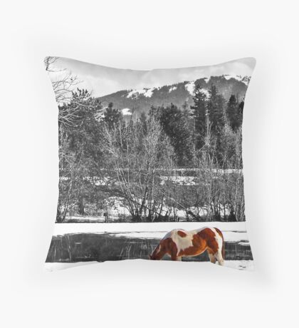 Painted - SC Series Throw Pillow