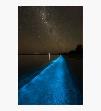 Bioluminescence under the Southern Sky Photographic Print