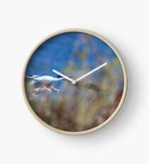 Diving! Clock