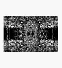 Forest Disaster BW Photographic Print