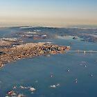 A Plane's Eye View of the San Francisco Bay and Beyond by Martha Sherman