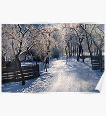 Winter Light Poster