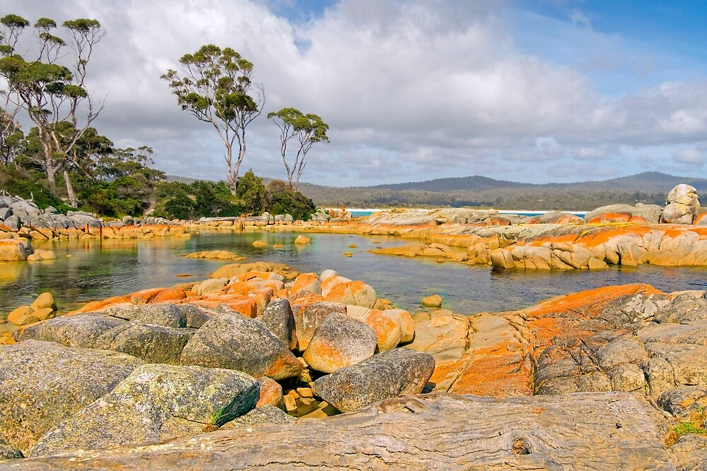 BINALONG BAY - BAY OF FIRES - TASMANIA - AUSTRALIA by TonyCrehan