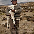 Little shepherd by Anthony Begovic