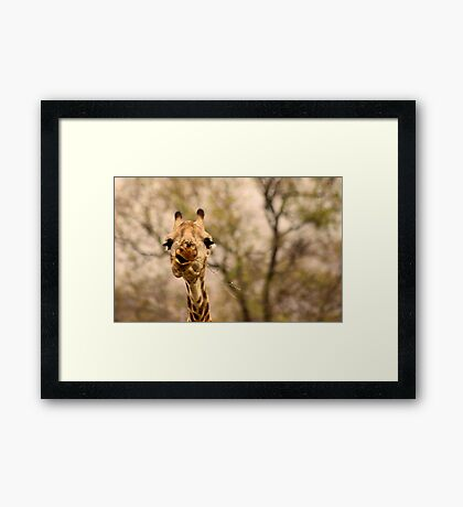 I SAID ...... DON'T TALK WITH FOOD IN YOUR MOUTH ! Framed Print