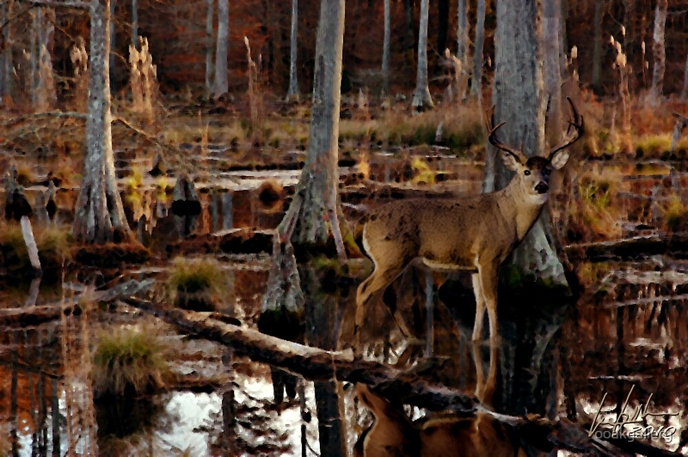 Next Season: Swamp Whitetail by ooakgallery