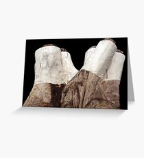 Protected! Greeting Card