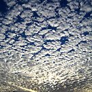 Puffy colorful clouds by Paul Doucette