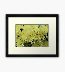 Whitish Yellow Flower Patch Framed Print