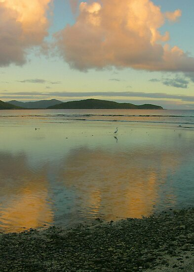 Mary Point Dawn, St. John by Stephen Vecchiotti
