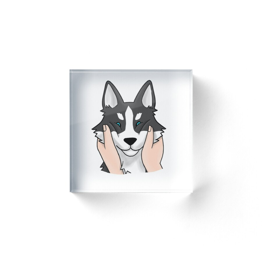 Popular Siberian Husky Chubby Adorable Dog - abf,4x4,x900-bg,ffffff  Picture_739145  .jpg
