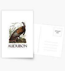 Wild Turkey by John James Audubon Postcards