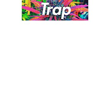 TRAP by Olegkron