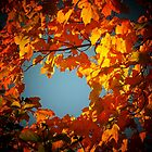 A fall window by jammingene