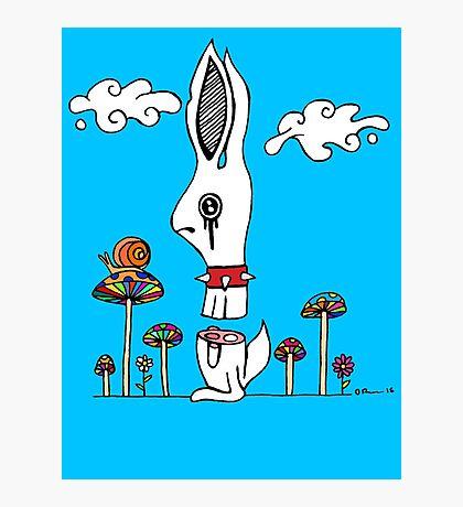 Sliced Rabbit Photographic Print