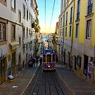 Particular Funicular  by lanebrain photography