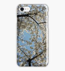 Pearly white spring blossoms  iPhone Case/Skin