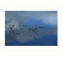Reflections ... of a confusing branch Art Print