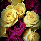 RED VELVET AND LEMON CREAM ROSES by Elaine Bawden
