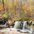 Wasserfall fallen von MelissaPhoto