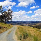 Country Road by NinaJoan