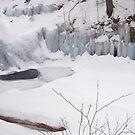 The Ice Wall at Wyandot Falls by Gene Walls