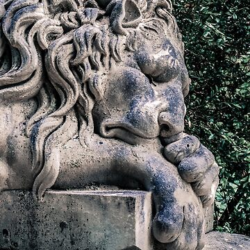 Lion Sleeps Over the Dead by christiansheehy