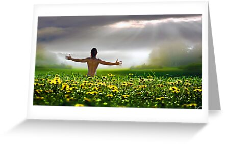 Sensual morning greeting cards by igor zenin redbubble sensual morning by igor zenin m4hsunfo