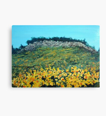 Broom Flowers, Capri Canvas Print