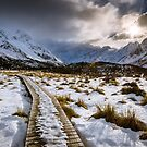 Hooker Trail Boardwalk by Alex Stojan