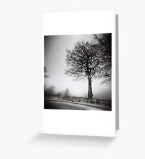 a tree in winter Greeting Card
