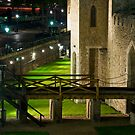 Tower of London by Eric Flamant
