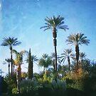 Desert Medley by Steve Rosenberger