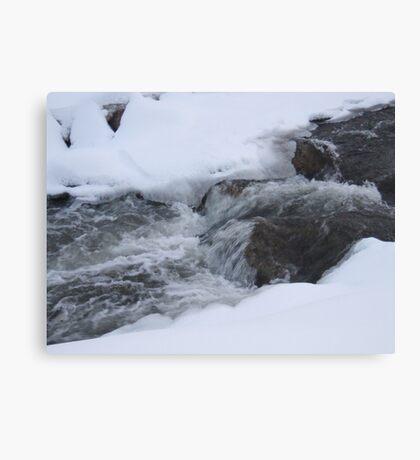 AuSable River Dam Canvas Print