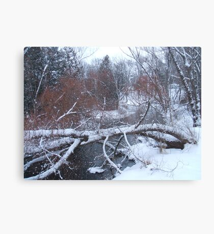 Tree over river Canvas Print