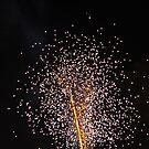 Dandelion Fireworks by Bill Spengler
