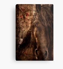 Music of horse Metal Print