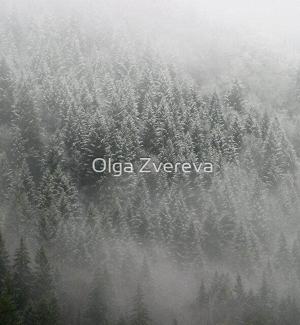 Touch of the Snow by Olga Zvereva
