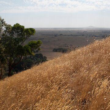 Summer Grass Lands, Volcanic Plains by janemcdougall