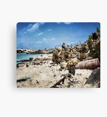 Marines on Beach Canvas Print