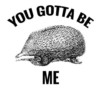 You gotta be Echidna Me - Funny Echidna Pun by CactusPop